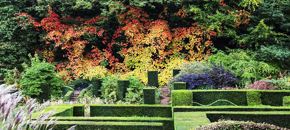 Veddw-House-Garden-octoberr2016-81