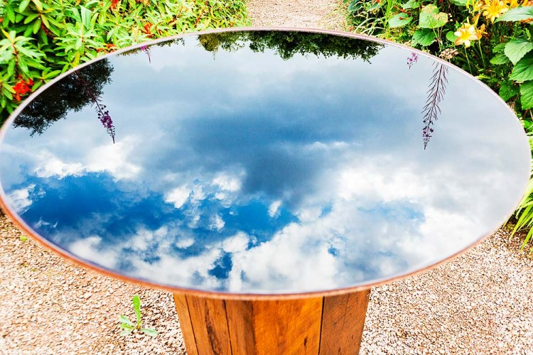 Reflections in Bird Bath, Veddw. copyright Anne Wareham