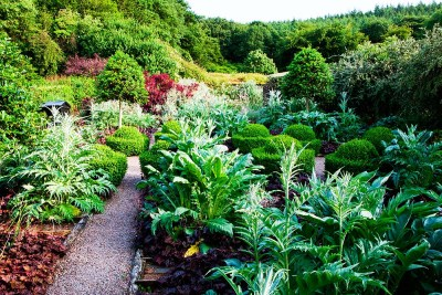 Veddw_House_Garden_July_13-4
