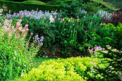 Veddw_House_Garden_July_13-66