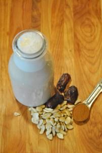 Cashew Horchata: https://vedgedout.com/2013/04/19/raw-vegan-lite-cashew-horchata/