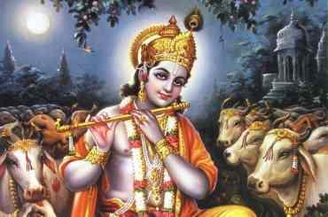 Sri Krishna Govinda Gopal