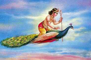 Lord Kartikeya and Peacock