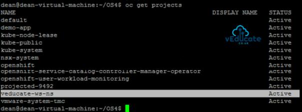 Tanzu Mission Control Create New Namespace Cluster Output
