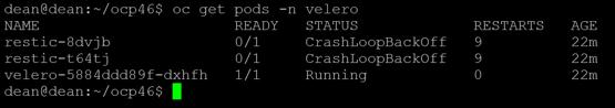 TMC oc get pods restic error crashloopbackoff