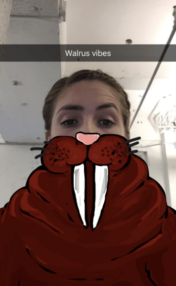 """walrus-vibes-snapchat.png """"title ="""" walrus-vibes-snapchat.png """"width ="""" 356 """"height ="""" 577"""