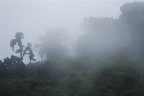 We rijden direct de mist in...