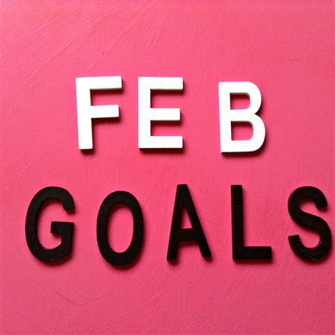 veerlez_goals_feb (Small)