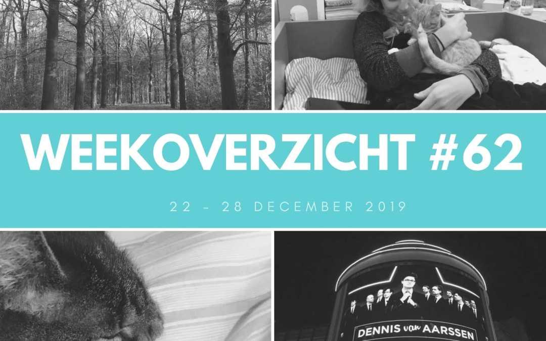 Weekoverzicht #62: een kattige kerst