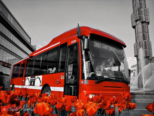 Stokholmo autobusas