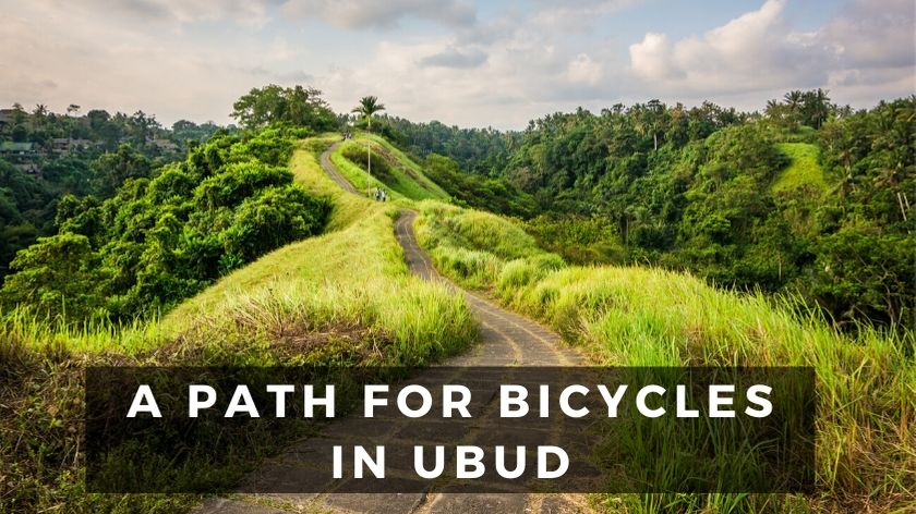 bali itinerary - day 2 - cycling in ubud