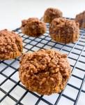 Pumpkin Oatmeal Bites
