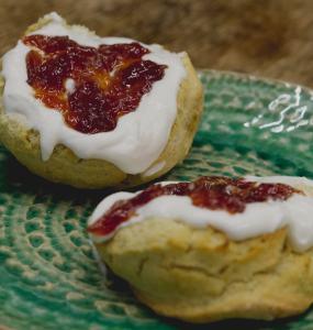 Vegan scone at Herbivore Kitchen Edinburgh