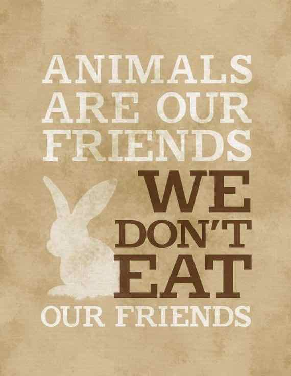 "Image of bunny with vegan quote: ""Animals are our friends, we don't eat our friends."""