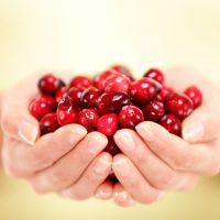 Healthy Vegan Cranberry Cake - Whole Wheat No-Oil, No-Sugar, WFPB