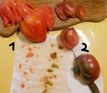 Tomatensorten 1-2