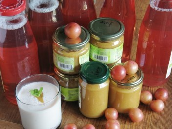Kirschpflaumenprodukte