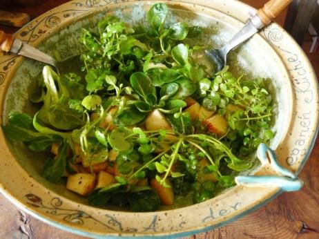 Schaumkraut-Apfel-Feldsalat