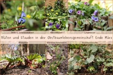 Waldgarten Ende März