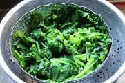 Spinat nach dem Abschrecken