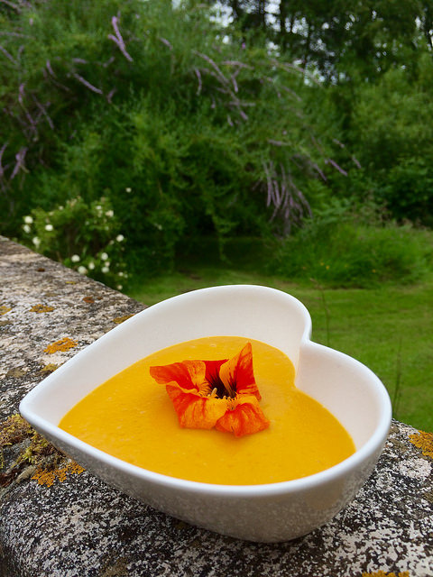 soup and nasturtium