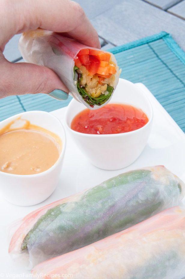 Lentil Spring Rolls Recipe - Vegan Family Recipes