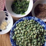 ingredients: baby broad beans, crushed garlic, spices and herbs