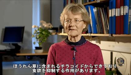 チラコイド」をつくったスウェーデン、ルンド大学のシャーロット・アーランソン・アルバーモソン教授のインタビュー