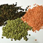 Best Vegan Protein Sources