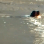 Russian Man Saves Drowning Dog in Icy River – Incredible!