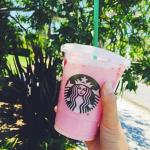 """Starbucks' Secret Vegan """"Pink Drink"""" Not So Secret Anymore"""