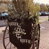 Katoen & Koffie - More Vegan Treats in Brielle