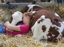 8a108-girl-sleeping-in-the-barn