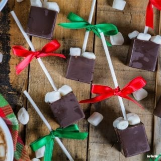 Who wouldn't love a cozy cup of chocolatey goodness topped with sweet pillowy marshmallows?This Hot Chocolate on a Stick is the perfect gift for just about anyone on your list.