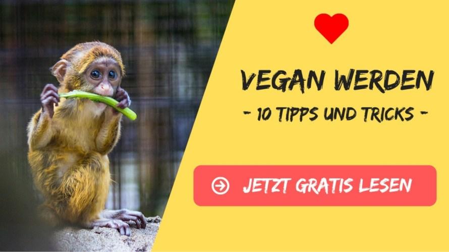 vegan werden umweltschutz