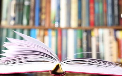 könyvajánló Zöld Ellától