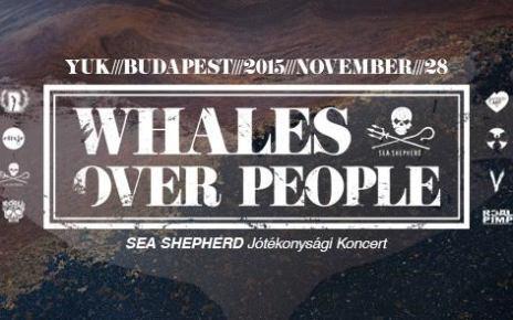 Sea Shepherd jótékonysági koncertek