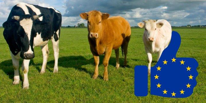 24 EU képviselő követeli, hogy Európa térjen át a növényi étrendre