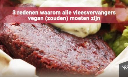 3 redenen waarom alle vleesvervangers vegan (zouden) moeten zijn