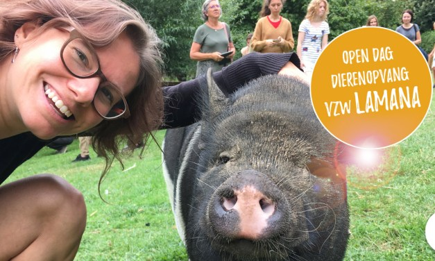 Open dag in de dierenopvang van Sofie Senden (vzw Lamana)