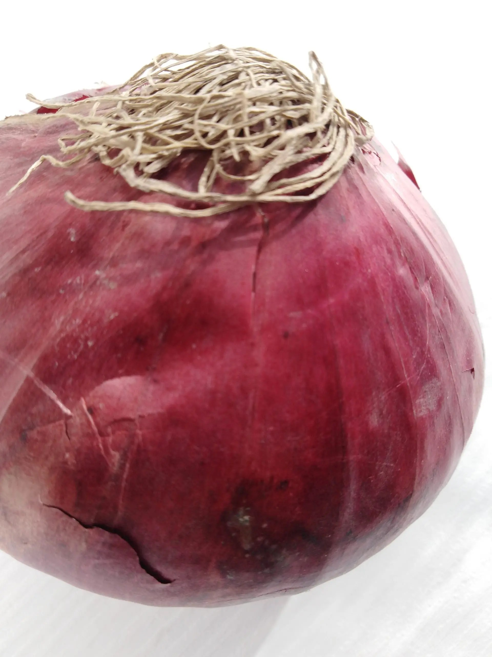 Red onion close-up