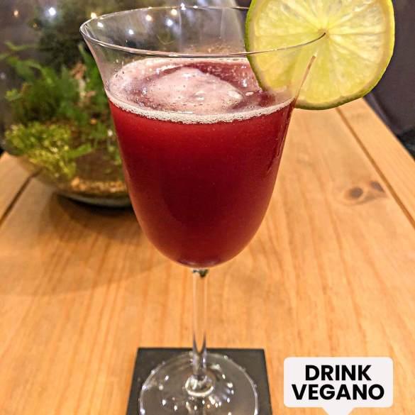 Drink Vinho Vegano - Receita Veganizadores