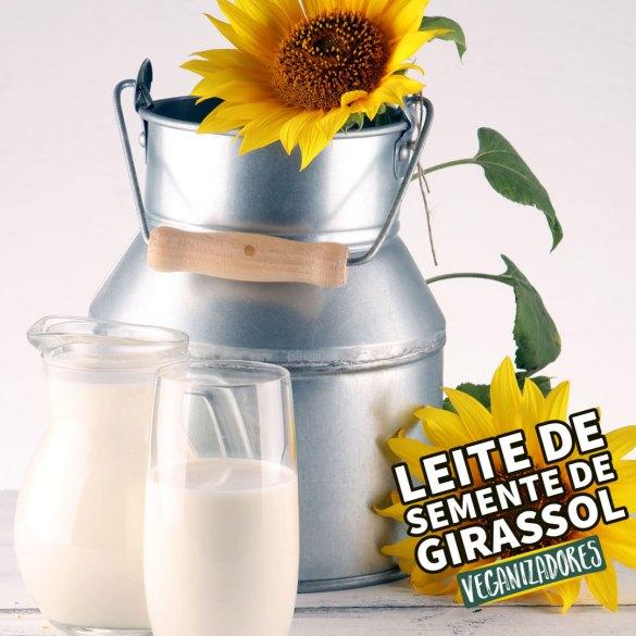 Leite de Semente de Girassol Receita Vegana Veganizadores Vegan