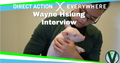 Wayne Hsiung Interview