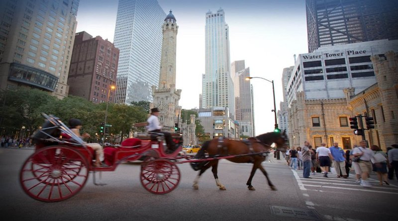 Victory! Chicago has banned horse-drawn carriages just after a New York City carriage horse collapsed on video shocking many and sparking protests.