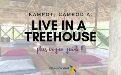 Kampot, Cambodia: Go Live in a Treehouse in this Hippy Mountain Town