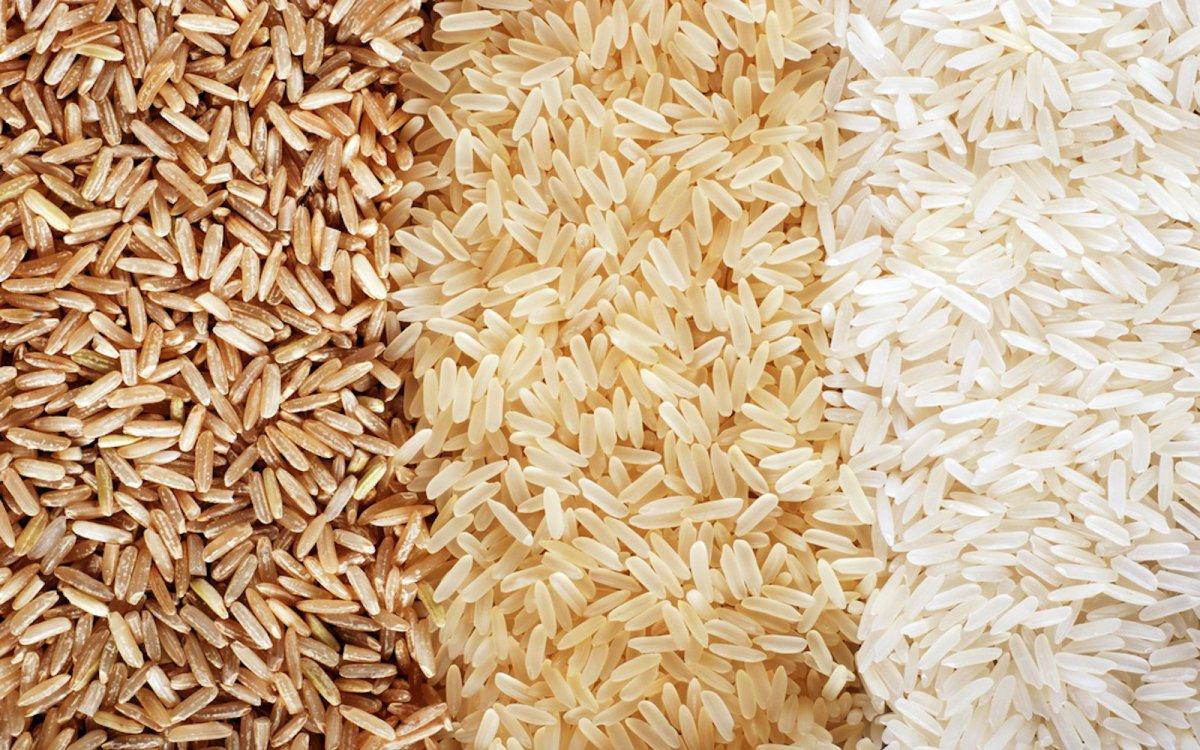 Vegan Rice Protein Market
