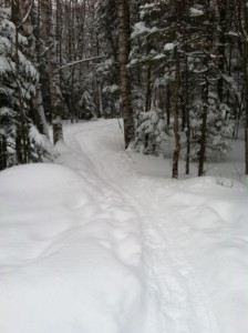Snowy trails on a winter camping trip at Thirteenth Lake in the Adirondacks