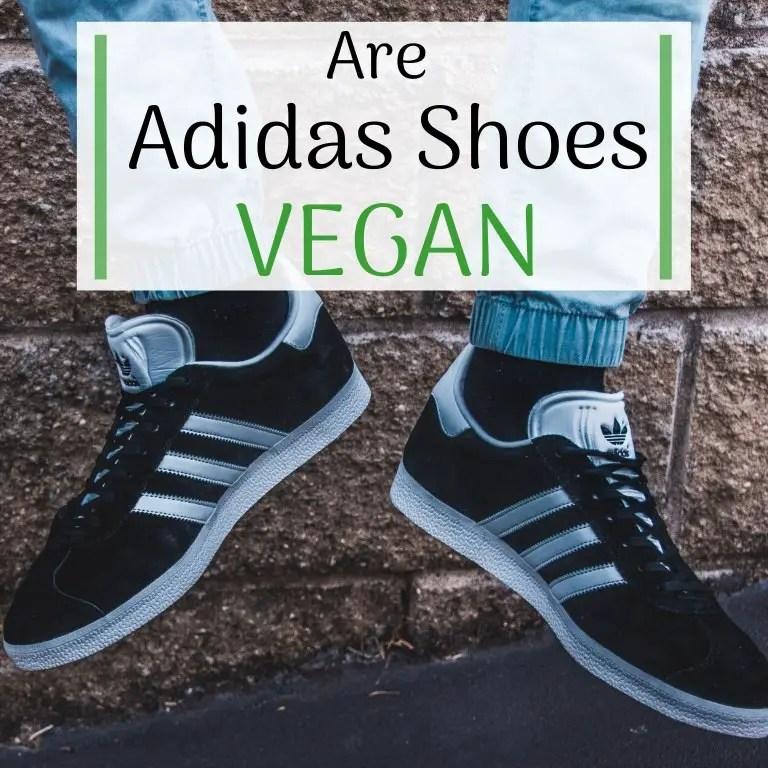 adidas neo vegan