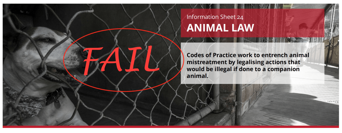 More Smoke And Mirrors From The Animal Justice Party With Their Animal Law Policy